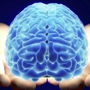 robo-brain-actualites-dakar-senegal
